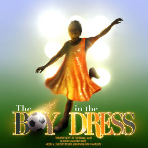 The Boy in the Dress artwork
